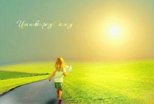 солнечный мир